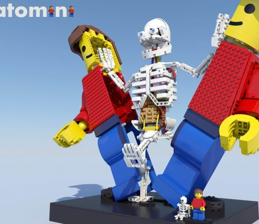 LEGO Ideas Anatomini door Stephan Niks
