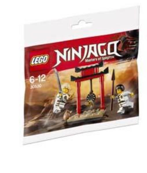 LEGO Ninjago 30530 WU-CRU Target Training