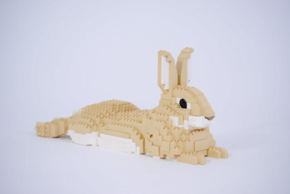 Felix Jaensch - Rabbit