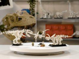 Designer Video LEGO Ideas Dinosaur Fossils
